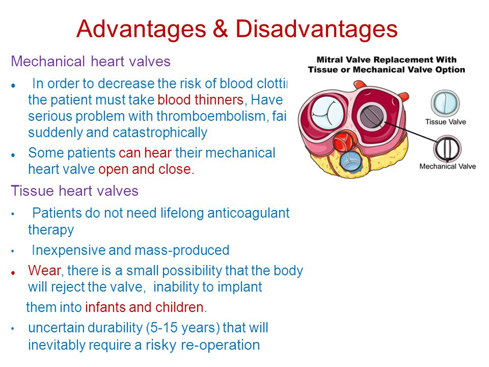 Advantages & Disadvantages Mechanical heart valves In order to decrease the risk of blood clotting, the patient must take blood thinners, Have serious problem with thromboembolism, fail suddenly and catastrophically Some patients can hear their mechanical heart valve open and close.