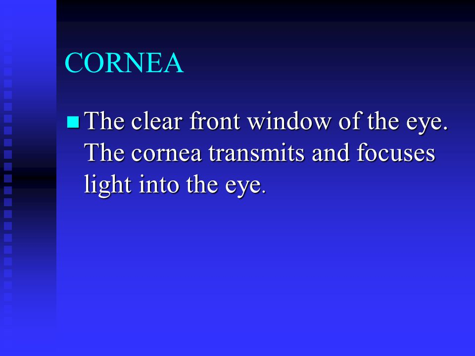 CORNEA The clear front window of the eye. The cornea transmits and focuses light into the eye. The clear front window of the eye. The cornea transmits