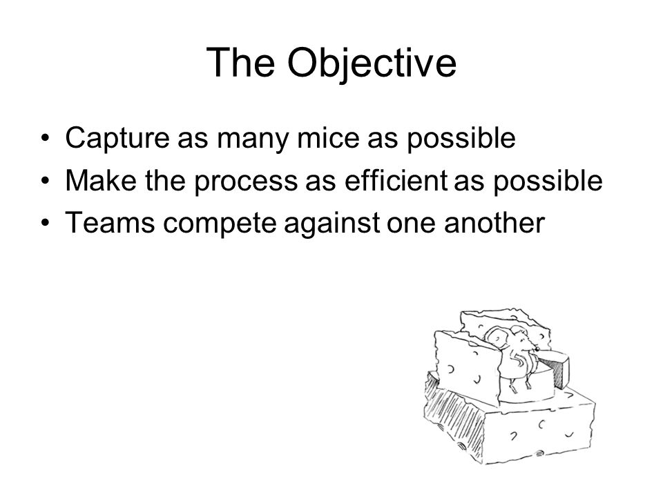 The Objective Capture as many mice as possible Make the process as efficient as possible Teams compete against one another