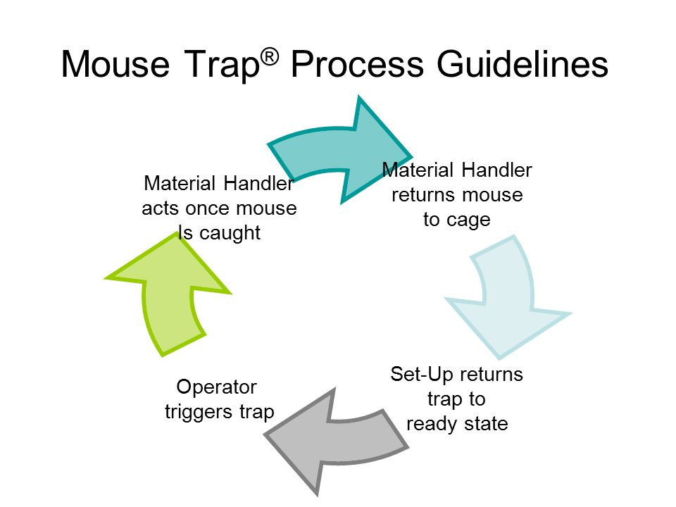 Mouse Trap ® Process Guidelines