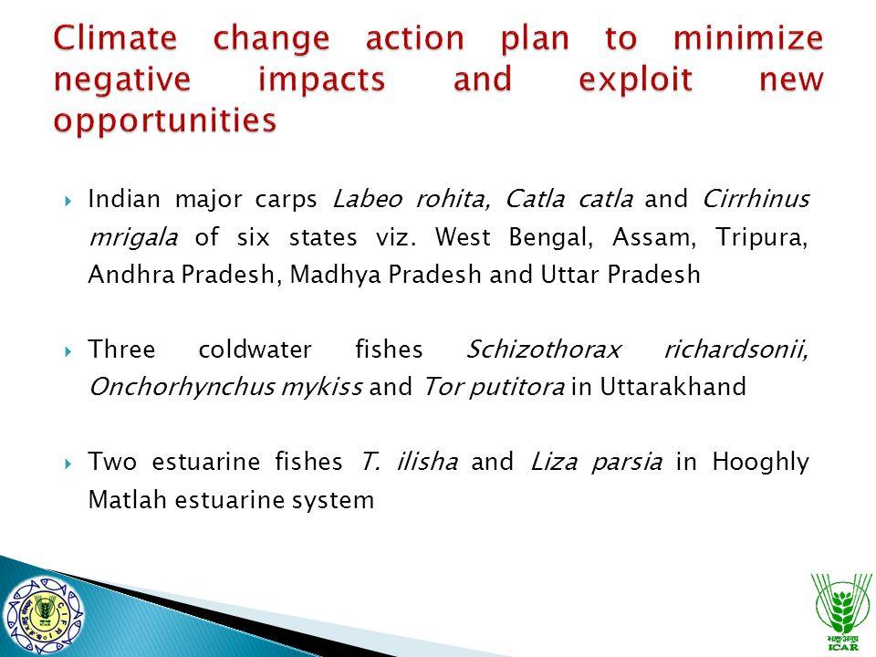  Indian major carps Labeo rohita, Catla catla and Cirrhinus mrigala of six states viz. West Bengal, Assam, Tripura, Andhra Pradesh, Madhya Pradesh an