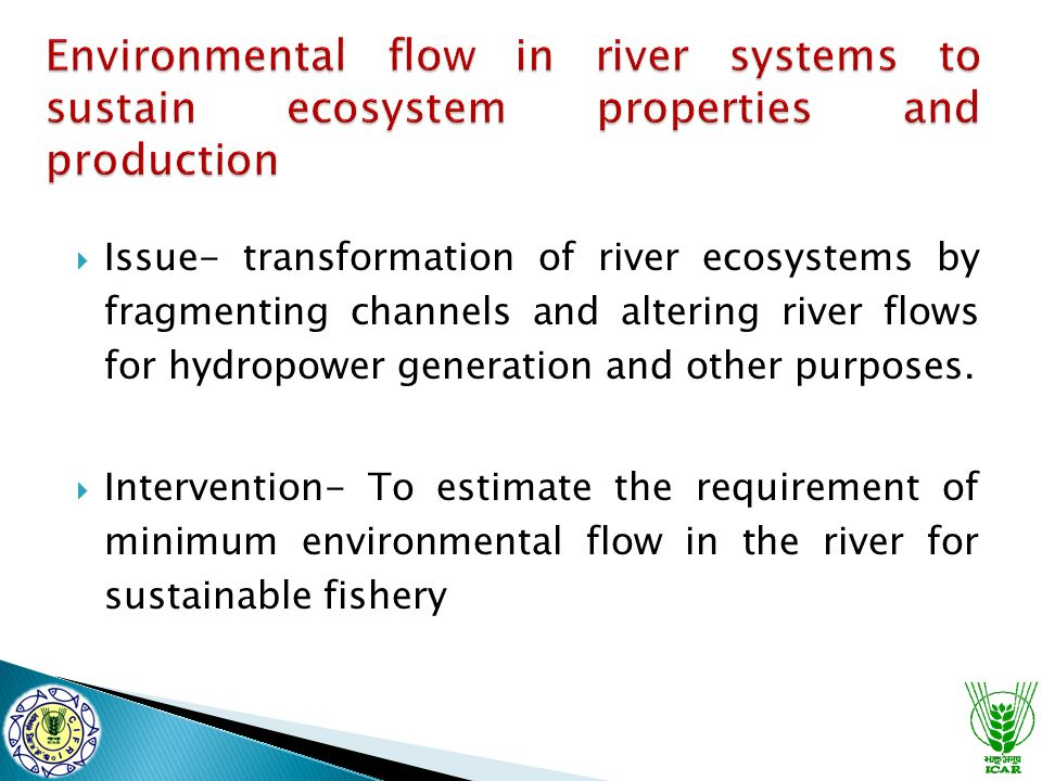  Issue- transformation of river ecosystems by fragmenting channels and altering river flows for hydropower generation and other purposes.  Intervent