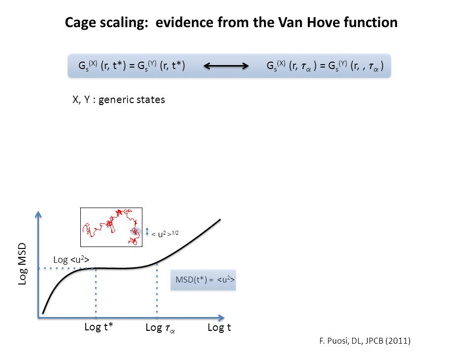 Log t Log MSD Log Log t* F. Puosi, DL, JPCB (2011) Log   Cage scaling: evidence from the Van Hove function G s (X) (r, t*) = G s (Y) (r, t*) G s (X)