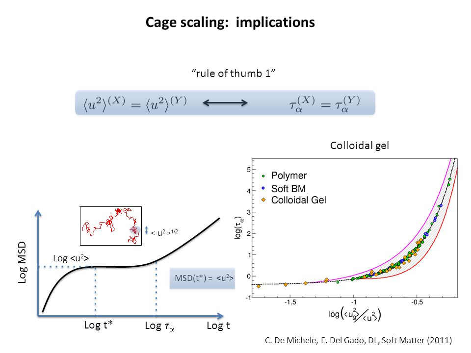 "C. De Michele, E. Del Gado, DL, Soft Matter (2011) Cage scaling: implications ""rule of thumb 1"" Log MSD Log Log t Log t* Log   1/2 Colloidal gel MSD"