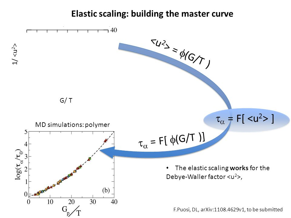 1/   = F[ ] =  (G/T ) MD simulations: polymer G/ T   = F[  (G/T )] The elastic scaling works for the Debye-Waller factor, Elastic scaling: build