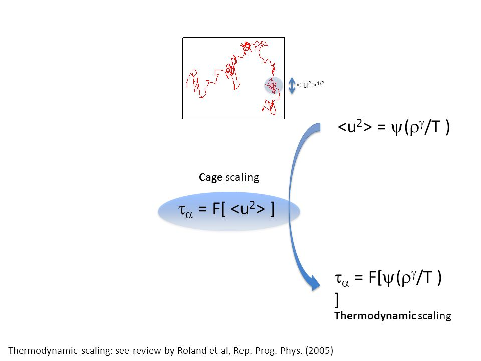 =  (   /T )   = F[  (   /T ) ]   = F[ ] Thermodynamic scaling 1/2 Cage scaling Thermodynamic scaling: see review by Roland et al, Rep. Prog.