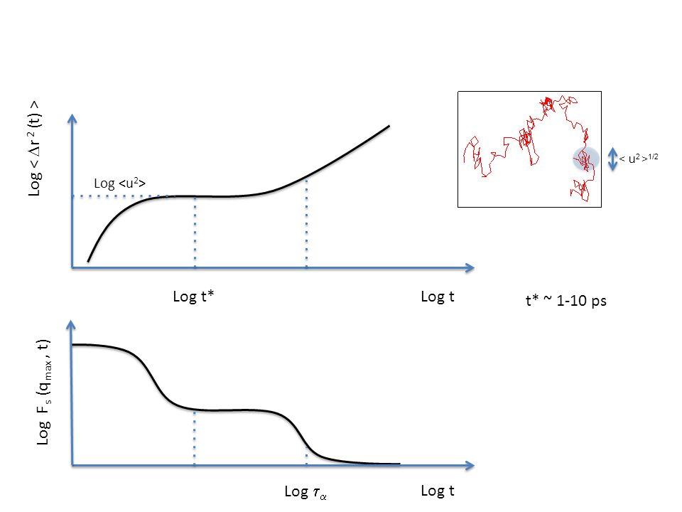 t* ~ 1-10 ps Log t Log   Log Log t* Log t Log F s (q max, t) 1/2