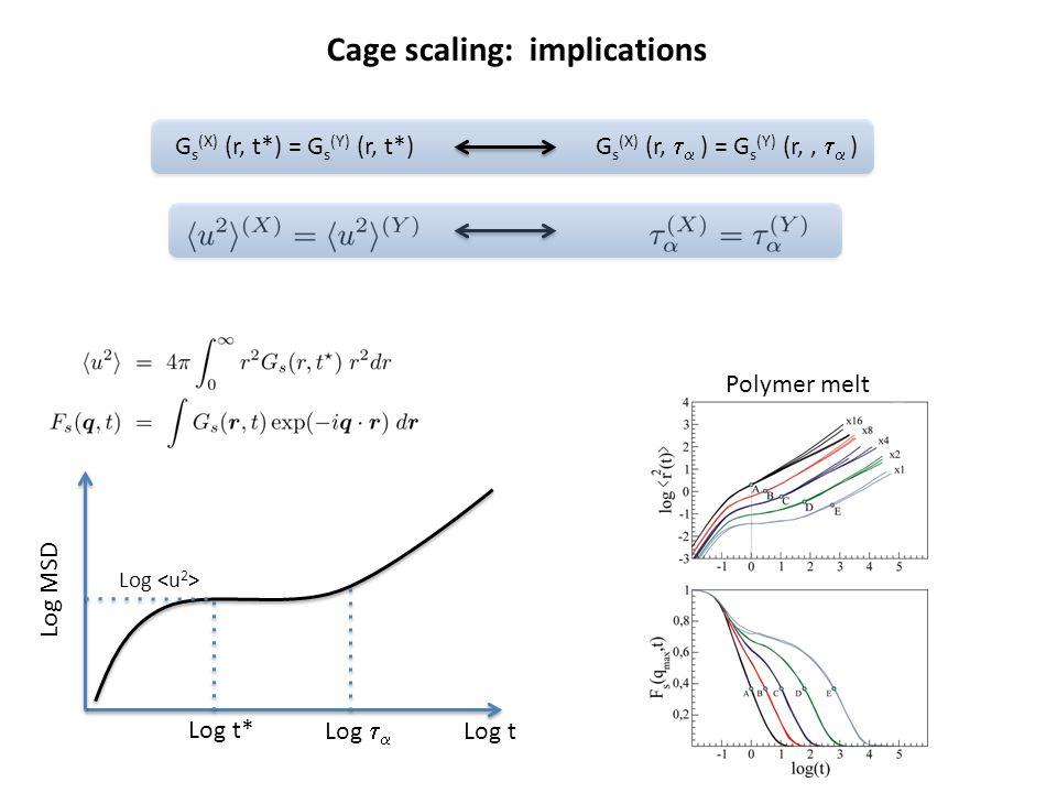 Log MSD Log Log t Log t* Log   Cage scaling: implications G s (X) (r, t*) = G s (Y) (r, t*) G s (X) (r,   ) = G s (Y) (r,,   ) Polymer melt