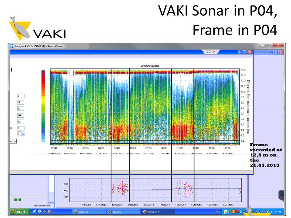 VAKI Sonar in P04, Frame in P04
