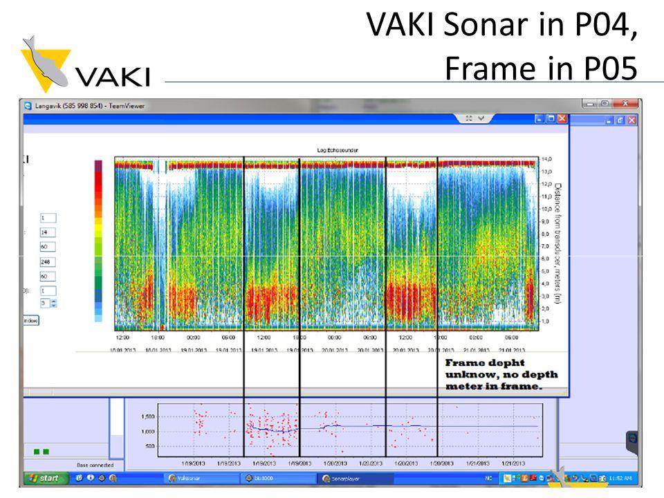 VAKI Sonar in P04, Frame in P05