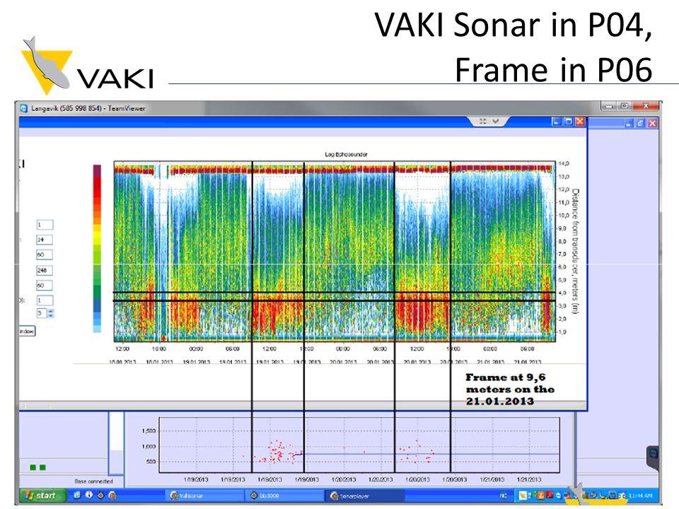 VAKI Sonar in P04, Frame in P06