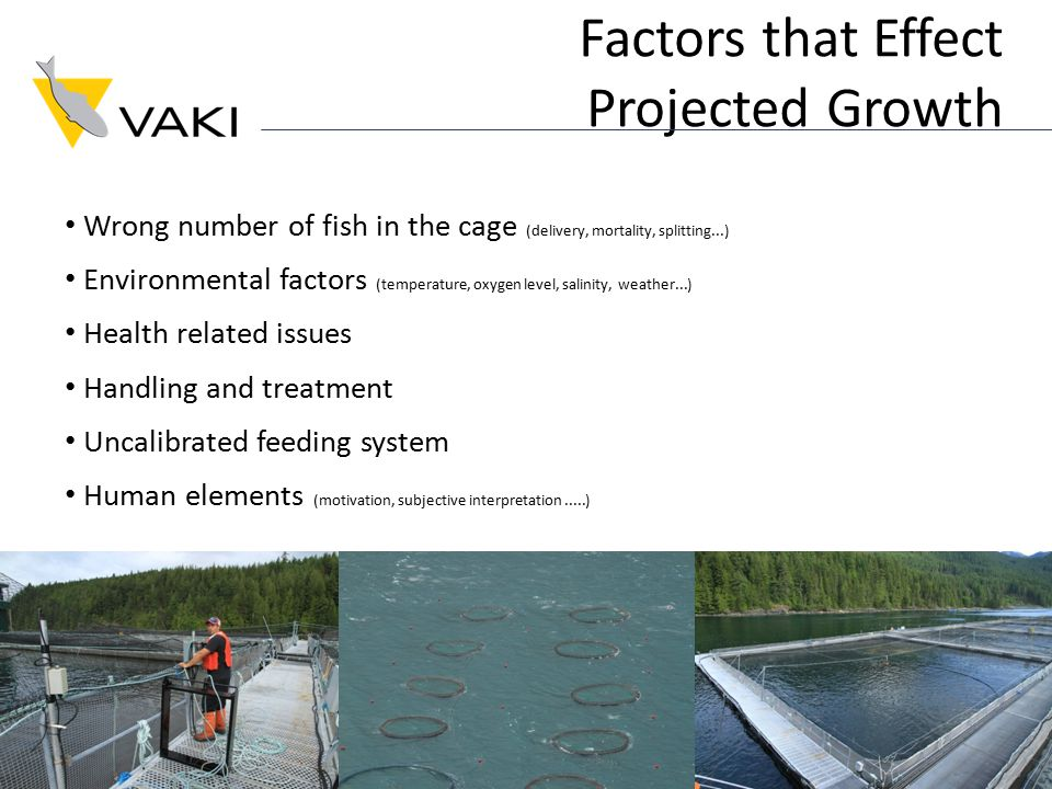 Factors that Effect Projected Growth Wrong number of fish in the cage (delivery, mortality, splitting...) Environmental factors (temperature, oxygen level, salinity, weather...) Health related issues Handling and treatment Uncalibrated feeding system Human elements (motivation, subjective interpretation.....)