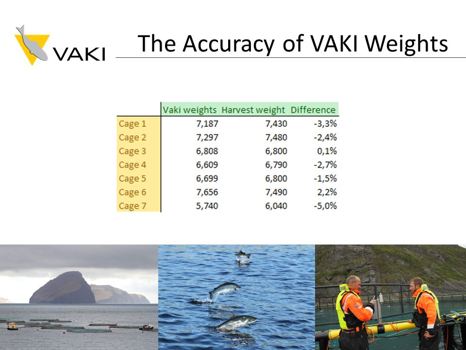 The Accuracy of VAKI Weights