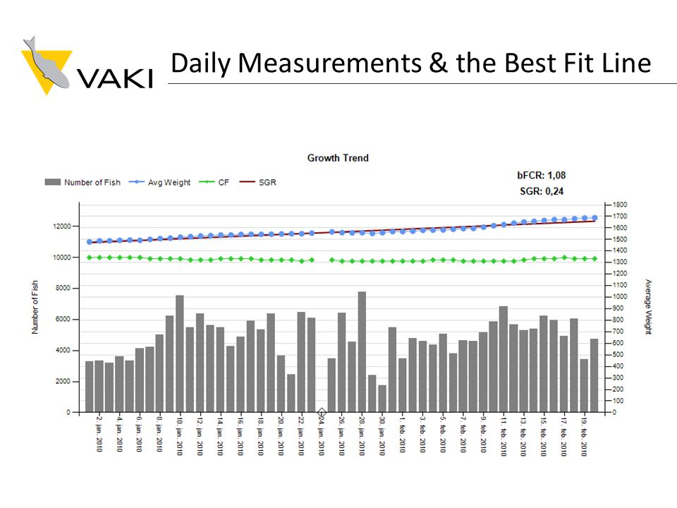 Daily Measurements & the Best Fit Line