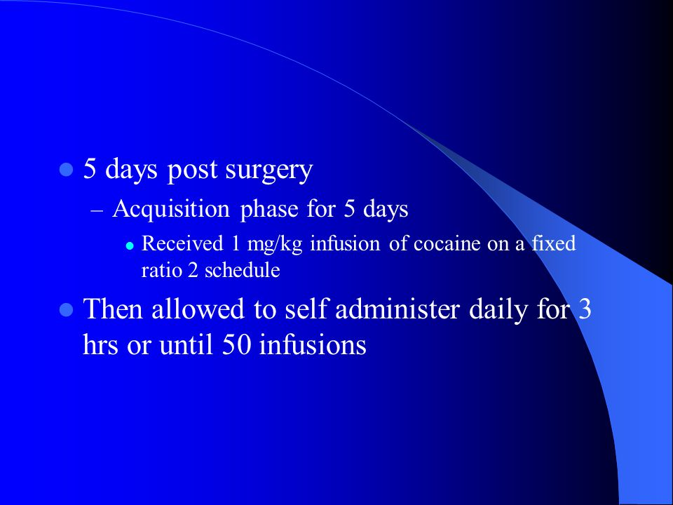 5 days post surgery – Acquisition phase for 5 days Received 1 mg/kg infusion of cocaine on a fixed ratio 2 schedule Then allowed to self administer daily for 3 hrs or until 50 infusions