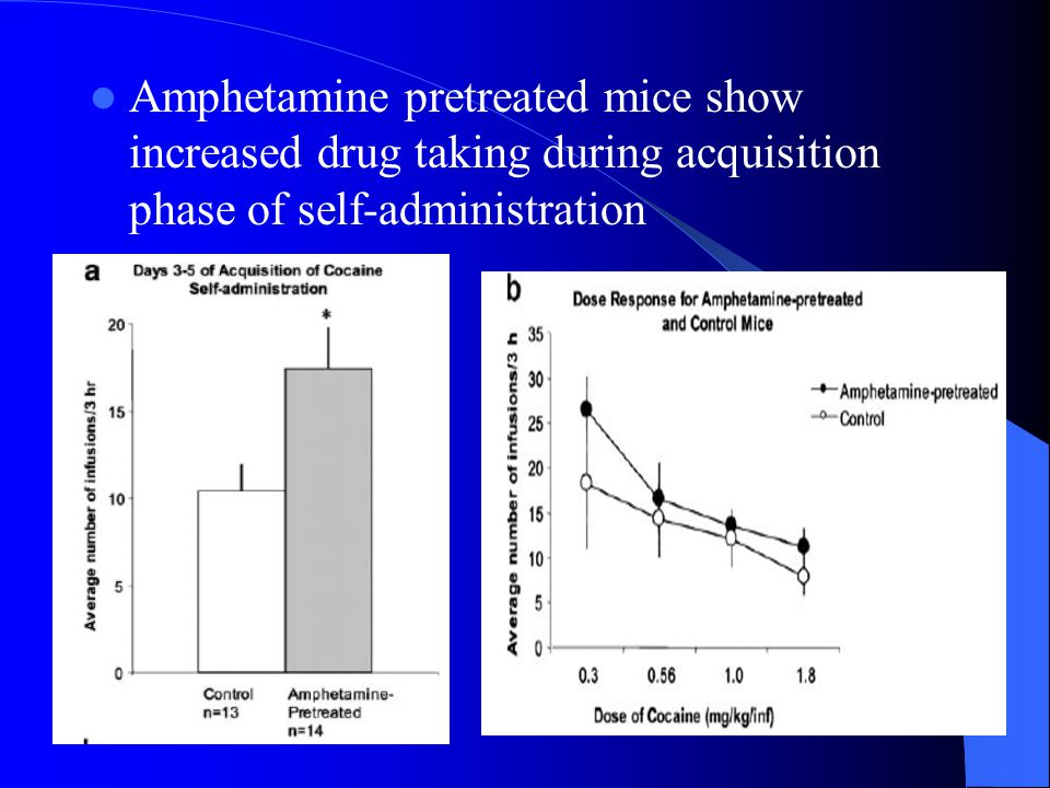 Amphetamine pretreated mice show increased drug taking during acquisition phase of self-administration