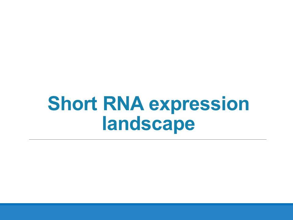 Short RNA expression landscape