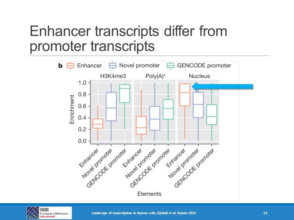 Enhancer transcripts differ from promoter transcripts Landscape of transcription in human cells, Djebali et al. Nature 2012 34