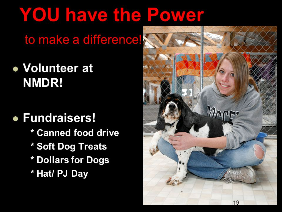 YOU have the Power to make a difference. Volunteer at NMDR.