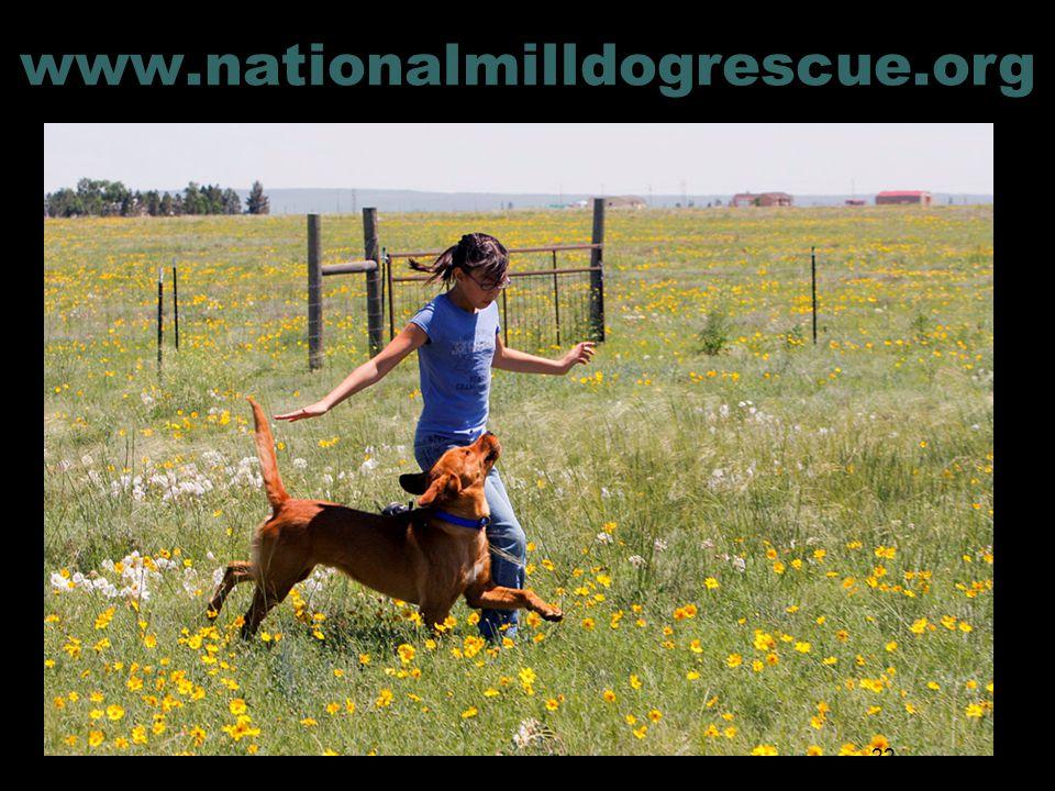 www.nationalmilldogrescue.org 22