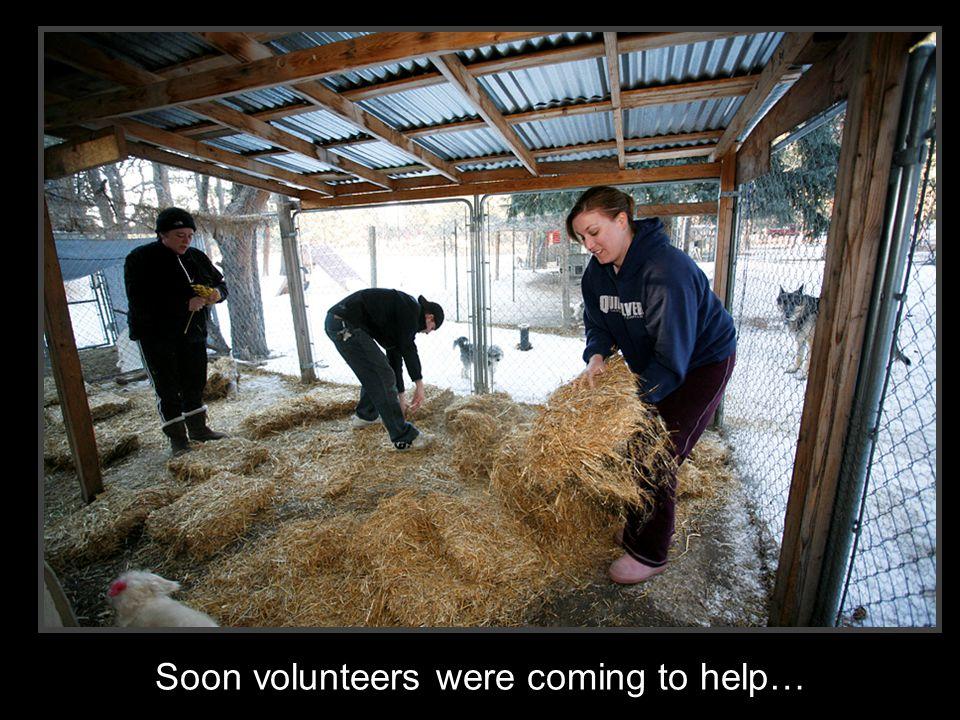 Soon volunteers were coming to help…