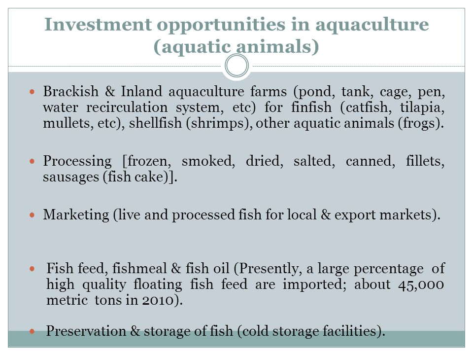 Investment opportunities in aquaculture (aquatic animals) Brackish & Inland aquaculture farms (pond, tank, cage, pen, water recirculation system, etc)