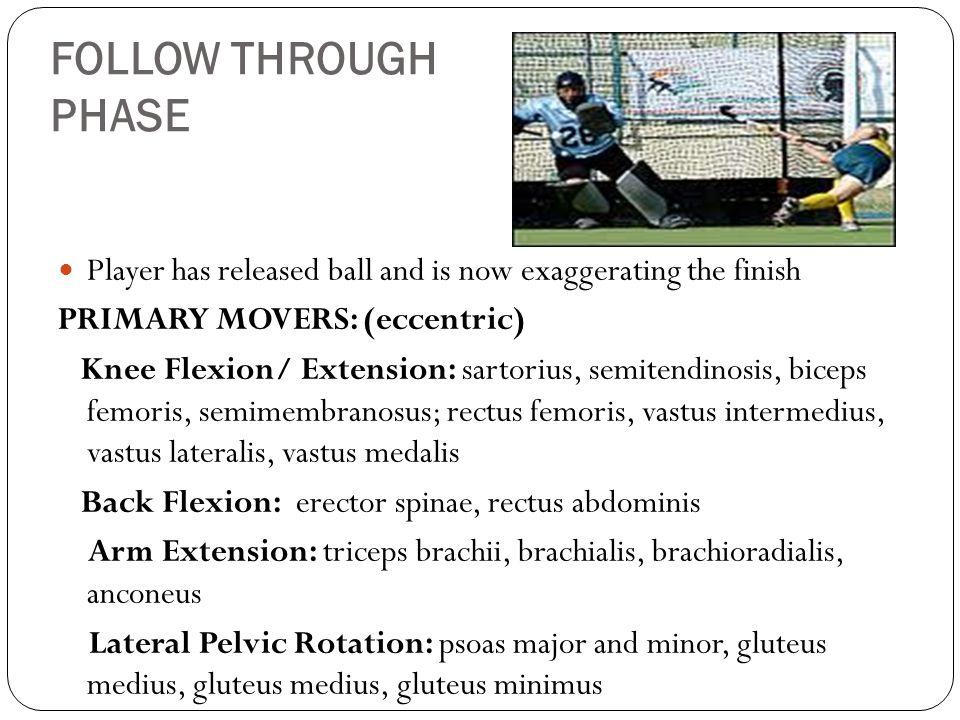 FOLLOW THROUGH PHASE Player has released ball and is now exaggerating the finish PRIMARY MOVERS: (eccentric) Knee Flexion/ Extension: sartorius, semitendinosis, biceps femoris, semimembranosus; rectus femoris, vastus intermedius, vastus lateralis, vastus medalis Back Flexion: erector spinae, rectus abdominis Arm Extension: triceps brachii, brachialis, brachioradialis, anconeus Lateral Pelvic Rotation: psoas major and minor, gluteus medius, gluteus medius, gluteus minimus
