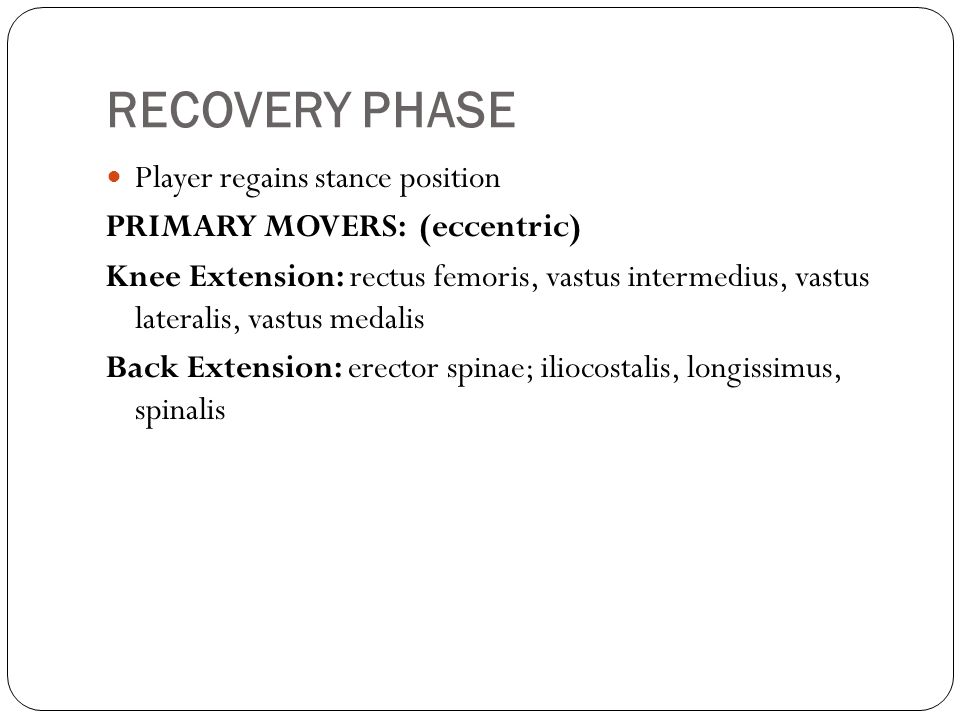 RECOVERY PHASE Player regains stance position PRIMARY MOVERS: (eccentric) Knee Extension: rectus femoris, vastus intermedius, vastus lateralis, vastus medalis Back Extension: erector spinae; iliocostalis, longissimus, spinalis