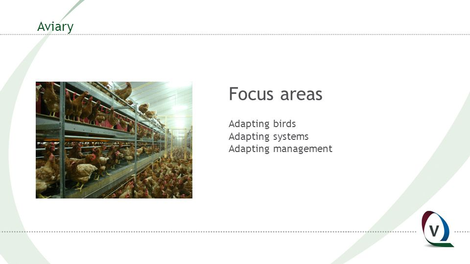 Aviary Focus areas Adapting birds Adapting systems Adapting management