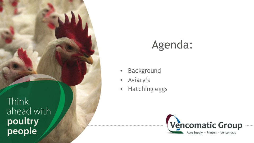 Agenda: Background Aviary's Hatching eggs