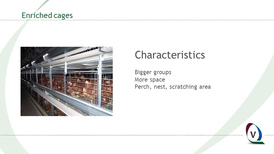 Enriched cages Characteristics Bigger groups More space Perch, nest, scratching area