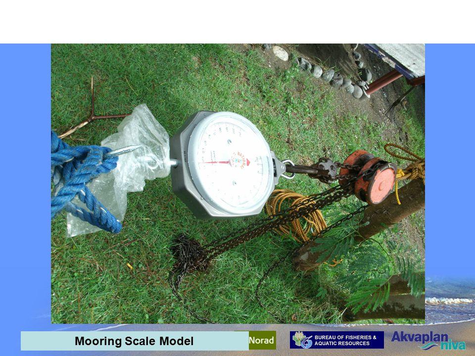 AquaPark Mid-term meeting - interim results Scale Model Set-up Mooring Scale Model