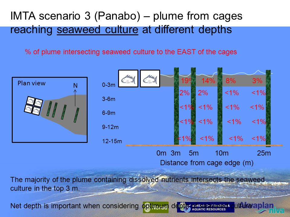 Distance from cage edge (m) 25 m 10 m 5 m 3m 0 m0 m 3m 5m 10 m 25m 1% 4% 11% 16% % of waste feed and faeces intersecting suspended culture IMTA scenario 2 (Panabo) – wastes from cages reaching suspended culture at different depths The majority of the wastes intersect the suspended culture in the top 6 m; these wastes are mostly fine and slow settling Milkfish faeces Net depth is important when considering optimum depth of suspended culture 0-3m 3-6m 6-9m 9-12m 12-15m 2% 5% 8% 8% 2% 2% 3% 2% 1% 1% 2% 2% 1% 1% 13% 9% 5% 1% 7% 6% 6% 2% 2% 2% 1% 1%