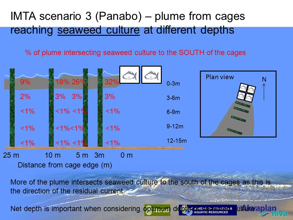 19% 14% 8% 3% Distance from cage edge (m) 0m 3m 5m 10m 25m % of plume intersecting seaweed culture to the EAST of the cages IMTA scenario 3 (Panabo) – plume from cages reaching seaweed culture at different depths The majority of the plume containing dissolved nutrients intersects the seaweed culture in the top 3 m.