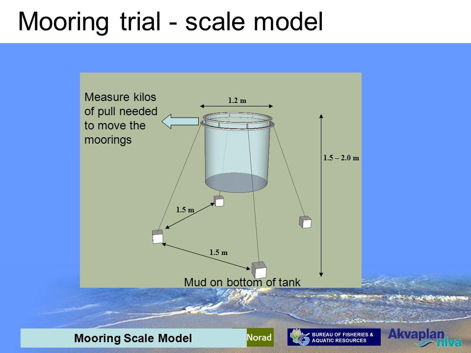 AquaPark Mid-term meeting - interim results Mooring trial - scale model Mooring Scale Model