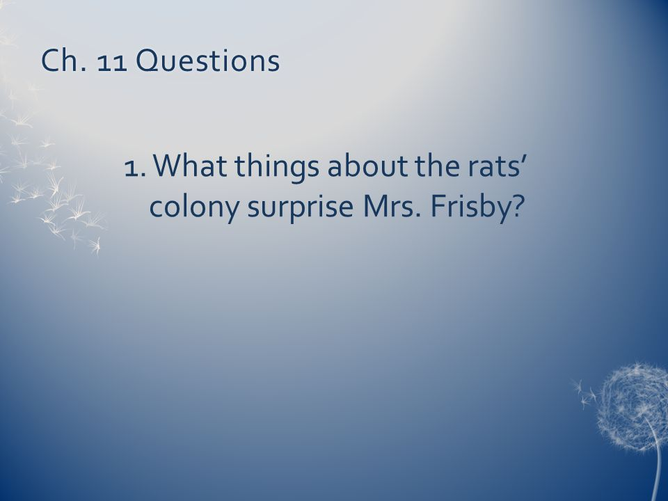 Ch. 11 QuestionsCh. 11 Questions 1. What things about the rats' colony surprise Mrs. Frisby?