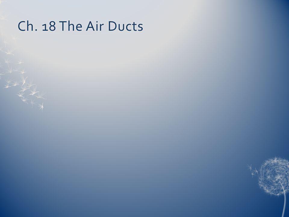 Ch. 18 The Air DuctsCh. 18 The Air Ducts