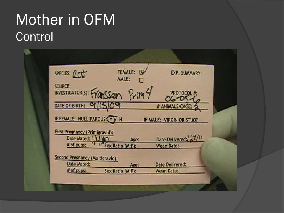 Mother in OFM Control