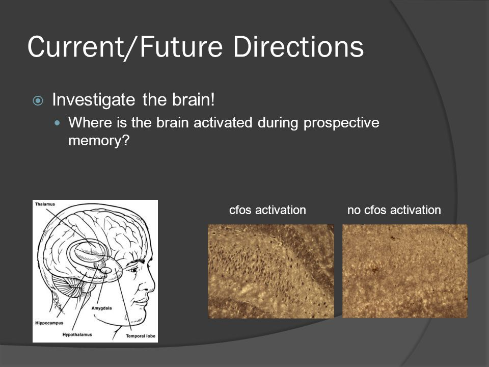 Current/Future Directions  Investigate the brain! Where is the brain activated during prospective memory? cfos activationno cfos activation