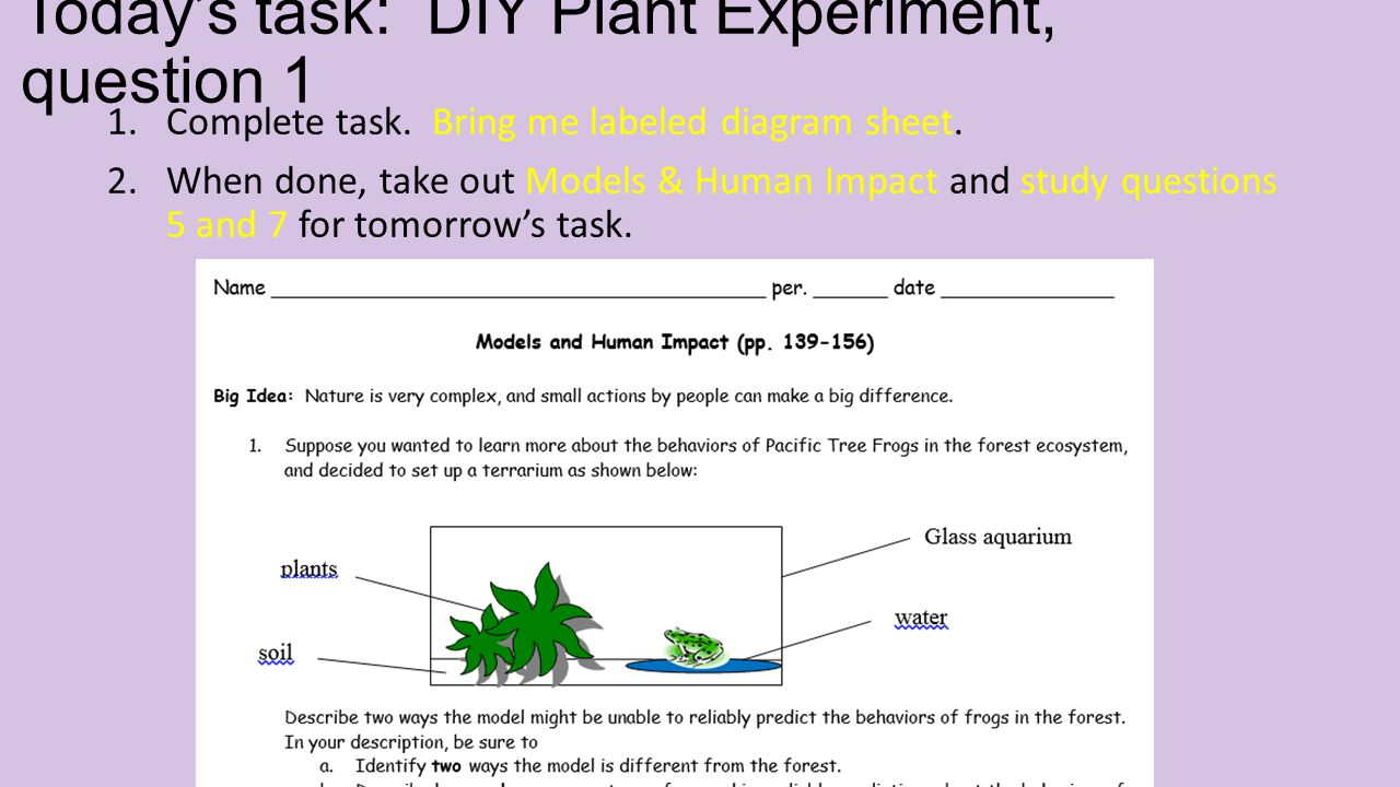 Today's task: DIY Plant Experiment, question 1 1.Complete task.