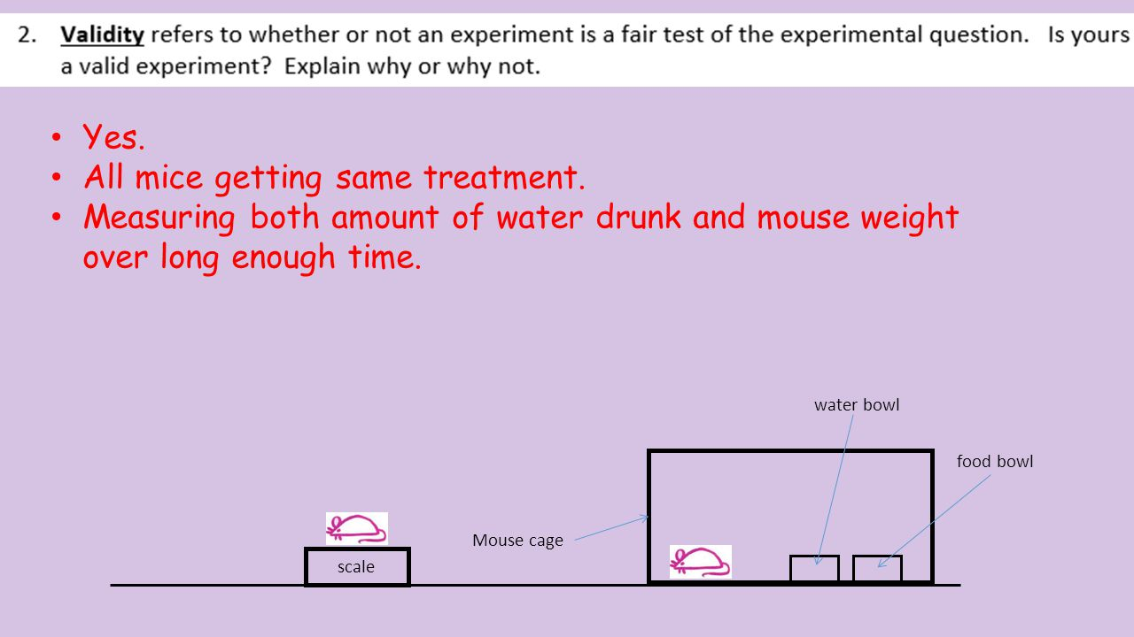 Mouse cage scale food bowl water bowl Repeat the experiment with more mice. Reliability = Repeat