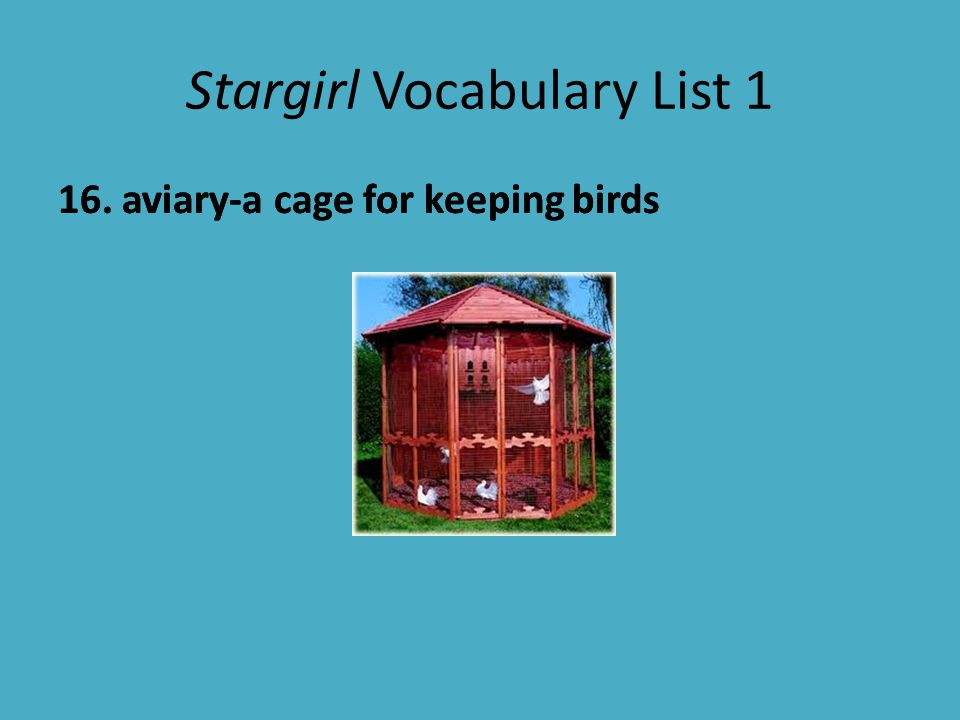 Stargirl Vocabulary List 1 17.