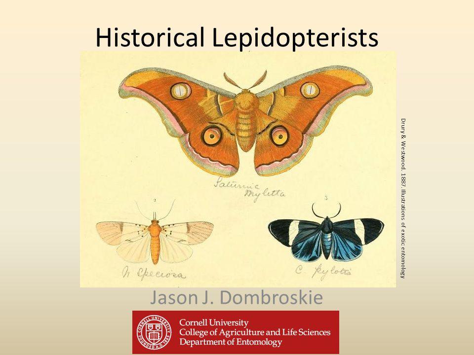 Historical Lepidopterists Jason J. Dombroskie Drury & Westwood.