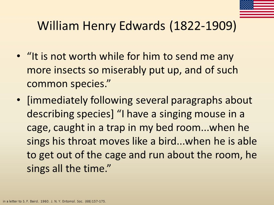 "William Henry Edwards (1822-1909) ""It is not worth while for him to send me any more insects so miserably put up, and of such common species."" [immedi"