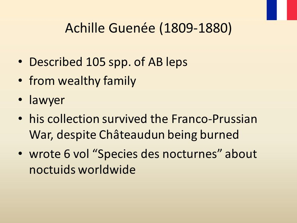 Achille Guenée (1809-1880) Described 105 spp. of AB leps from wealthy family lawyer his collection survived the Franco-Prussian War, despite Châteaudu