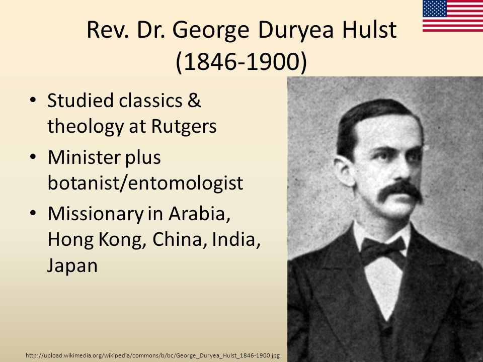 Rev. Dr. George Duryea Hulst (1846-1900) Studied classics & theology at Rutgers Minister plus botanist/entomologist Missionary in Arabia, Hong Kong, C