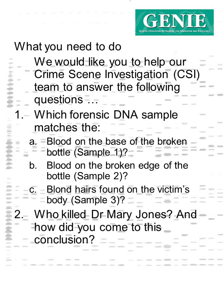 What you need to do We would like you to help our Crime Scene Investigation (CSI) team to answer the following questions … 1.
