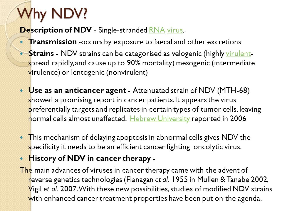 Why NDV? Description of NDV - Single-stranded RNA virus.RNAvirus Transmission -occurs by exposure to faecal and other excretions Strains - NDV strains