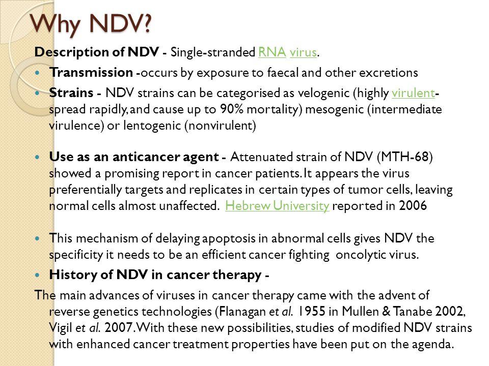 Why NDV.