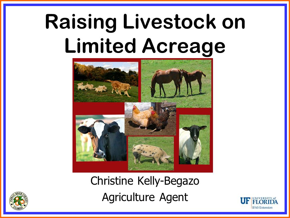 Raising Livestock on Limited Acreage Christine Kelly-Begazo Agriculture Agent